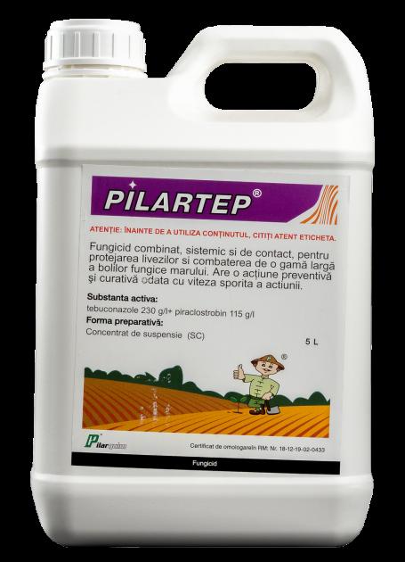 Pilartrep