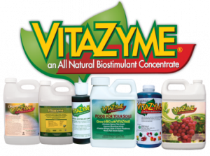 Grinai is the official dealer of Vitazyme